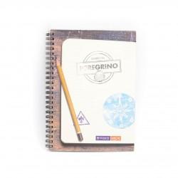 Cuaderno Diario del peregrino