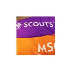 Bandera de Scouts MSC